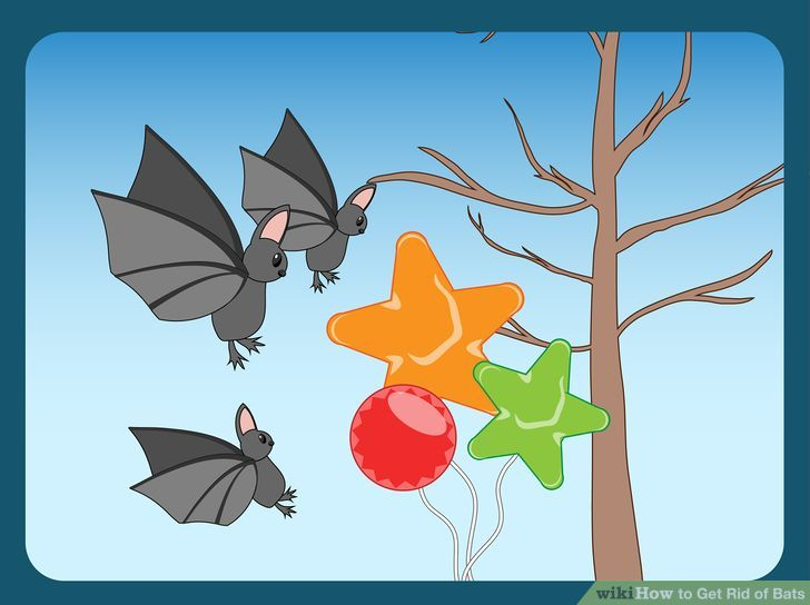 how to get rid of bats out of trees
