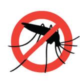 Mosquito away